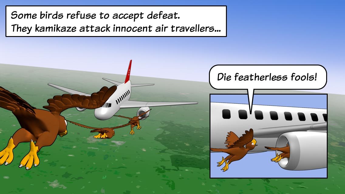 Some birds refuse to accept defeat. They kamikaze attack innocent air travellers...